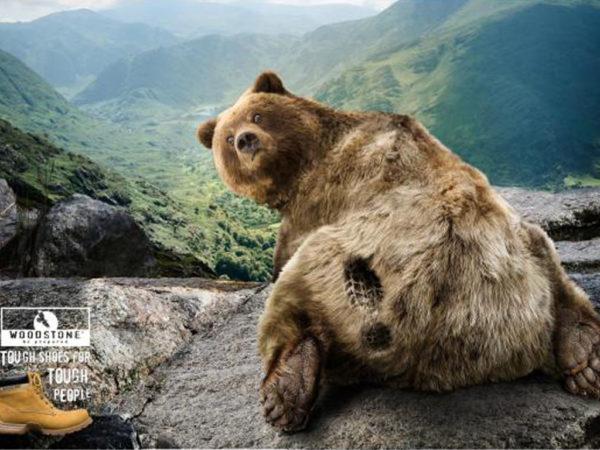 brand-bear-small-74198